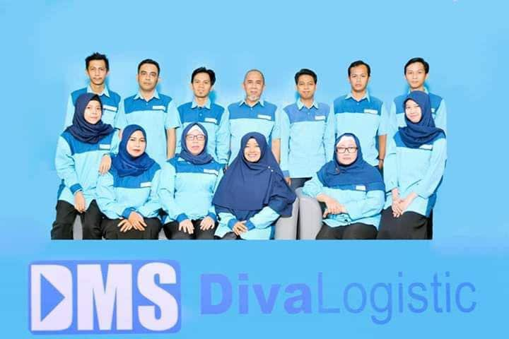 team-diva