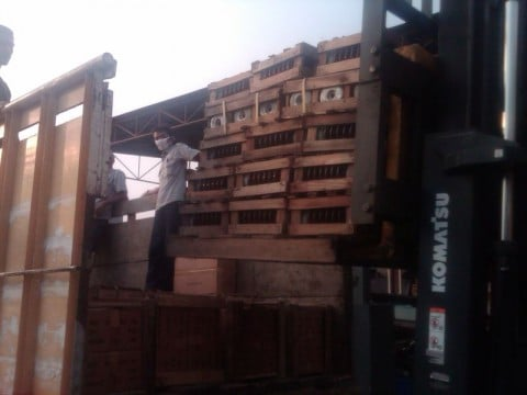 trucking-isol-480x360-1